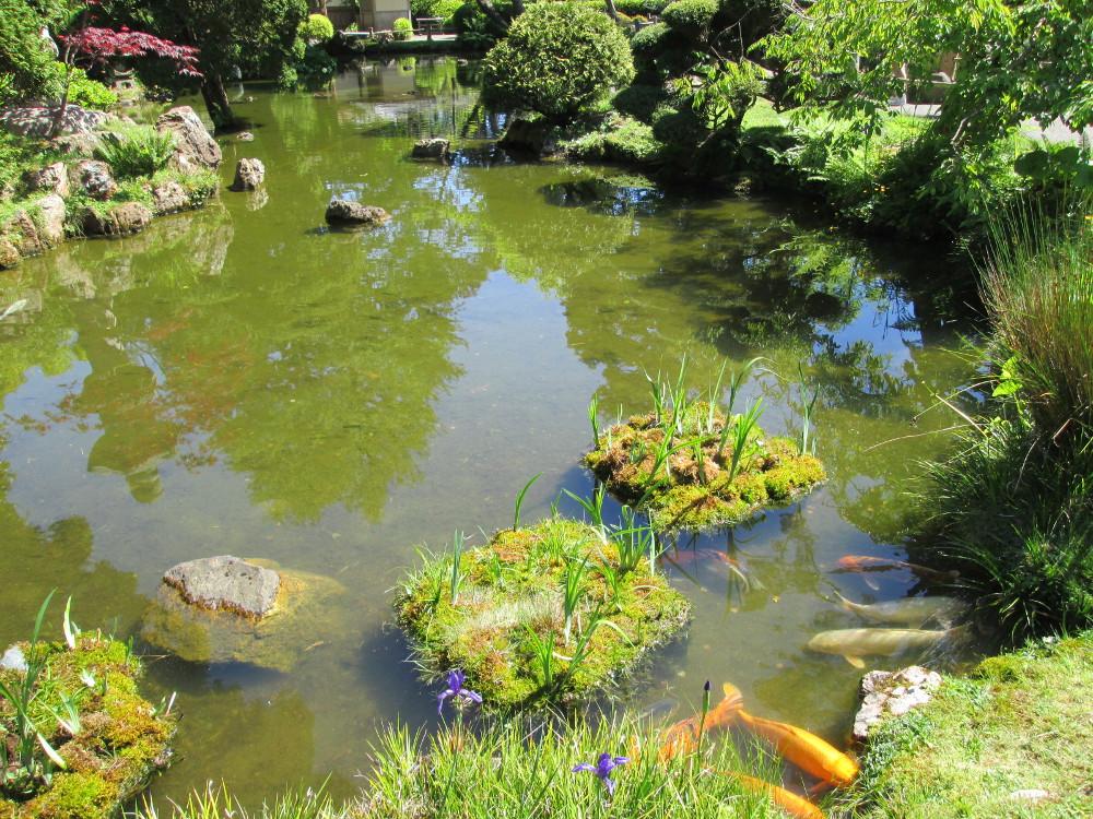 japanese tea garden in san francisco - Japanese Garden San Francisco