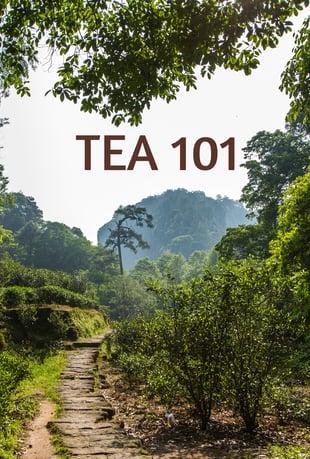 Tea Classification