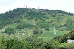 Chinese character for tea at Awaga Peak