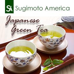 Sugimoto America